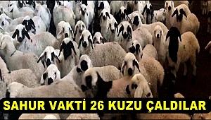 ESKİL'DE SAHUR VAKTİ 26 KUZU ÇALDILAR