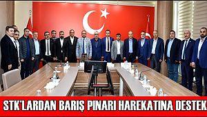 STK'LARDAN BARIŞ PINARI HAREKATINA DESTEK