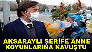 AKSARAYLI ŞERİFE ANNE KOYUNLARINA KAVUŞTU
