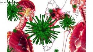 Koronavirüs salgınında vaka sayısı 7 bin 590'a ulaştı