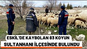 ESKİL'DE KAYBOLAN 83 KOYUN JANDARMA TARAFINDAN SULTANHANI İLÇESİNDE BULUNDU