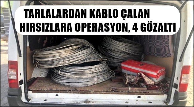 TARLALARDAN KABLO ÇALAN HIRSIZLARA OPERASYON 4 GÖZALTI